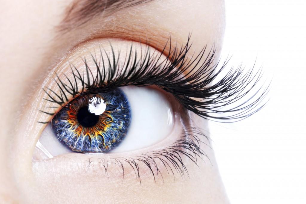 تقویت بینایی و جلای چشم با گیاه دارویی قاصدک