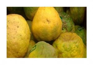 میوه اوگلی Ugli