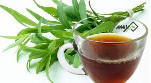 خواص چای ترخون , چای ترخون