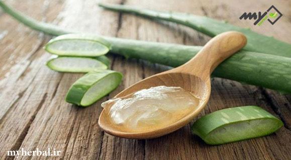 گیاهی بی نظیر برای رویش مو - گیاه پرپشت کننده مو
