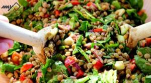 شام رژیمی - غذای رژیمی - طرزتهیه انواع غذای رژیمی